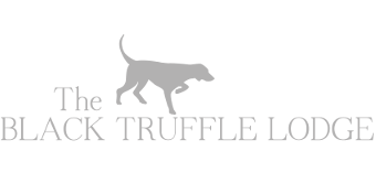The Black Truffle Lodge